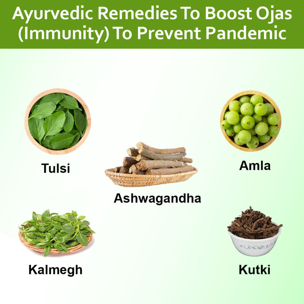 Ayurvedic herbs for strong Immune system